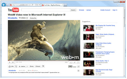 Google WebM插件(WebM Video for IE9) 官方免费版