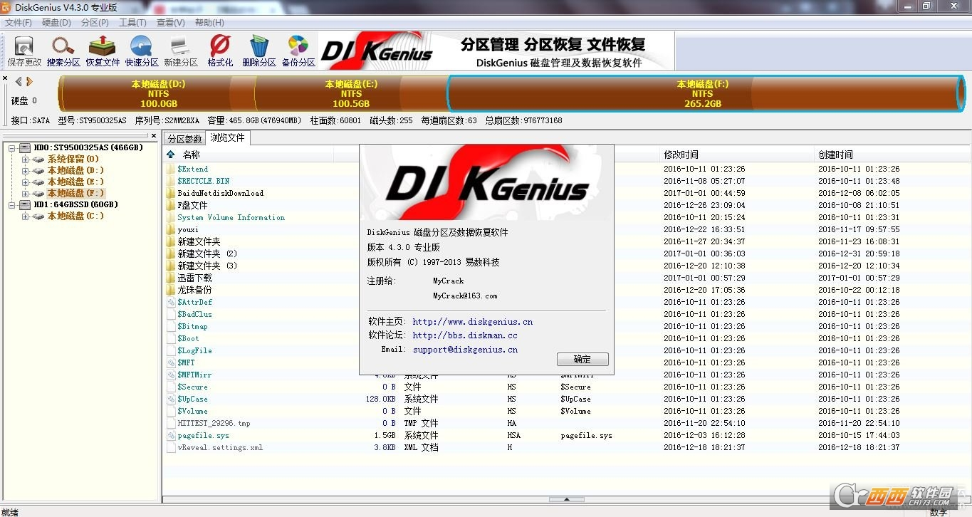 DiskGenius专业版PJ v4.3.0完美版