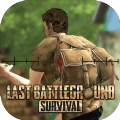 LastBattleGround:Surviva
