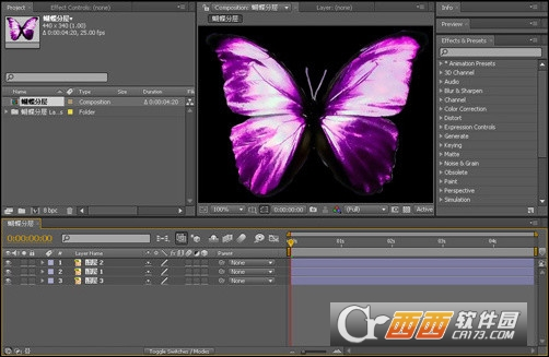 After Effects CS4汉化中文正式版 32位版本
