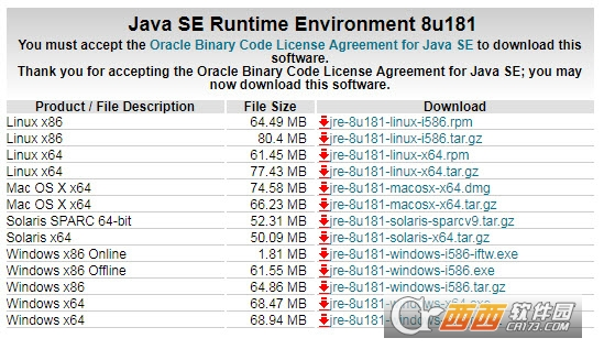Java SE Runtime(jre8 64位版)