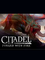 堡垒火焰之炼(Citadel: Forged with Fire)